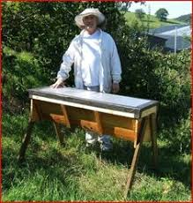 How To Build Top Bar Hive How To Attract Honey Bees To An Empty Top Bar Hive Raising Bees