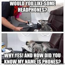 Koala Meme - head the koala meme by darkeyes115 memedroid