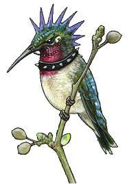 hummingbird tattoos designs high quality photos and flash designs
