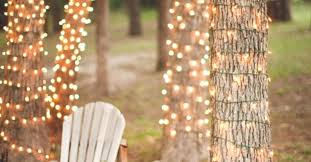 how to wrap lights around trees hometalk
