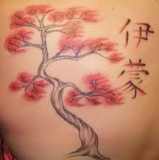 looking japanese cherry blossom tree