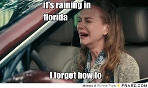 Florida Rain Meme - state by state memes page 2 ar15 com