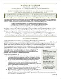 About Me Resume Examples by National Award Winning Executive Resume Examples Executive Cover