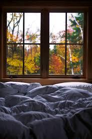 best 25 white down comforter ideas only on pinterest down