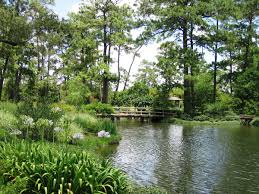 plants native to japan points of interest hermann park conservancy