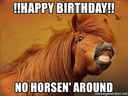 Horse Birthday Meme - happy birthday no horsen around horse lips meme generator