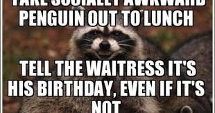 Evil Raccoon Meme - raccoon memes