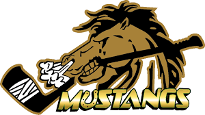 memorial mustangs mustangs hockey brick memorial hockey association