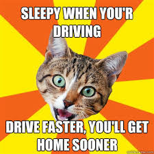 Meme Sleepy - sleepy when you r driving drive faster cat meme cat planet cat