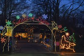 Lincoln Park Zoo Holiday Lights by Brookfield Zoo Christmas Lights Christmas Lights Decoration