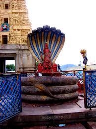 Vidga Hacks by Ghati Subramanya Temple Vidya Sury Collecting Smiles