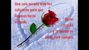 Imagenes De Amor Con Rosas Animadas | frases romanticas de amor con rosa y nieve animadas en agua youtube