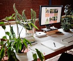 desk the best office plants plants that will thrive on your desk