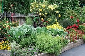 17 creative vegetable garden designs to inspire your garden revamp