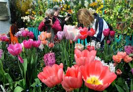 Smith Botanical Garden by Spring Bulb Show