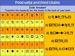 antarctic food web worksheet by honeill2 teaching resources tes