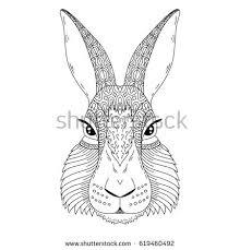 handdrawn portrait rabbit easter bunny sketch stock vector