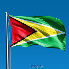 Flag Color Meanings Guyana Flag Colors Guyana Flag Meaning History
