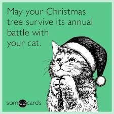 130 best christmas images on pinterest hilarious quotes humorous