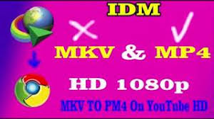 download youtube idm mp4 change youtube mkv files to mp4 on google chrome download through