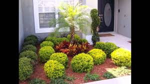 Florida Garden Ideas Wonderful Landscape Design Ideas Florida With Tropical Front Yard