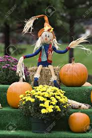 cute scarecrow wallpaper autumn display scarecrow pumpkins