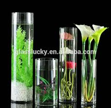 Cylinder Clear Glass Vases Vase And Glass Cylinder As Clear Glass Vase For Decoration Buy