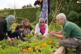 royal botanic garden edinburgh the edible gardening project