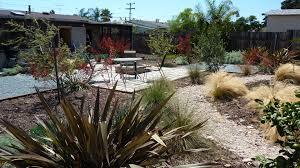 san diego garden in bloom