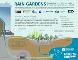 washington native plant society resource library 12 000 rain gardens