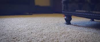 my heaven s best carpet cleaning