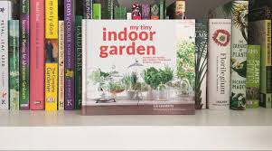 my tiny indoor garden by lia leendertz and mark diacono jack