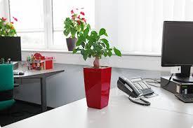 je ne suis pas au bureau egayez votre bureau avec lechuza