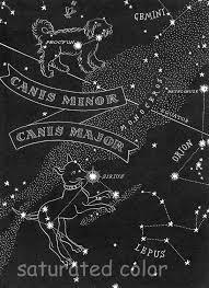 Night Sky Map Tonight Canis Major Large Dog Canis Minor Small Dog Night Sky Star Chart