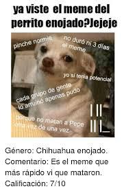 Memes De Chihuahua - 25 best memes about memes del perrito memes del perrito memes