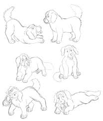 bmd puppies sketch by fooemackot on deviantart