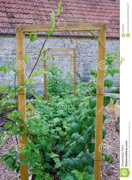 rustic country vegetable u0026 flower garden with frame for climbing