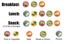 childcare network usda meal program nutrition