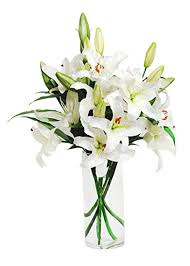 white lillies white bouquet 8 stems with vase grocery