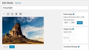 36 top wordpress plugins to enhance your website design