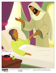 Mother In Law Unit by 3k Wonder U0026123discovery Parent U0027s Letter Jesus Healed Peter U0027s