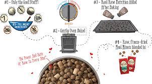 raw blend u2013 stella u0026 chewy u0027s pet food