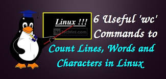 Count No Of Words In Unix 6 Wc Command Exles To Count Number Of Lines Words Characters
