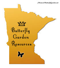 native plant sales minnesota butterfly garden resources