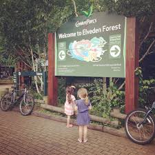centreparcs round two elveden forest diary of a midlife mummy