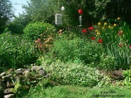 hummingbird garden plans creating a hummingbird garden