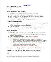 19 sales plan examples