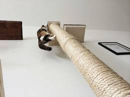 cat wall furniture vertical wall mounted sisal pole catastrophic creations