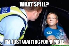 Kevin Rudd Memes - what spill i m just waiting for a mate kevin rudd waiting for a