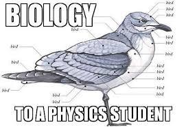 Biology Meme - instagram media by ilsuperuovo physics pinterest biology memes